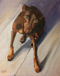 Pet Portraits painting  by Linda S. Marino, oil painting, brown dog, custom pet portraits