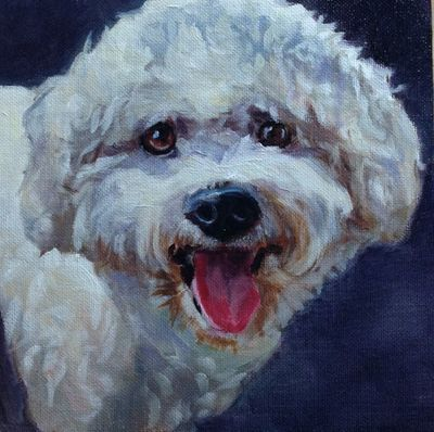 pet portraits paintings by Linda S. Marino, oil painting, bischon frese, custom pet portrait painting