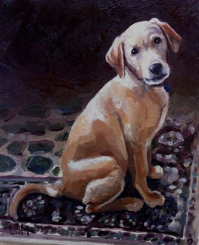 Pet Portraits painting  by Linda S. Marino, oil painting, yellow labrador dog, service dog, custom pet portrait